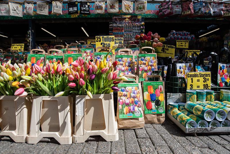 Day 15 - flower market in Amsterdam!!!, July 18th