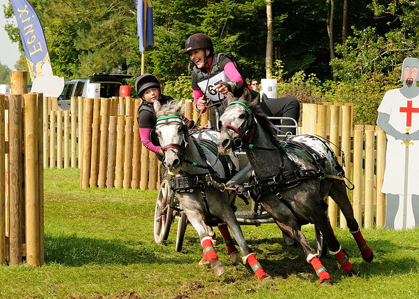 Carriage Driving Championships (Cirencester - 19-Sep-15)