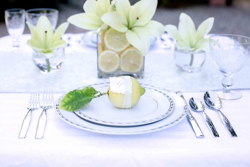 StaceyCochranePhotography_Wedding_Lemons_3305_Web.jpg