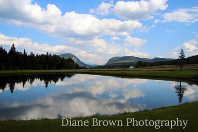 Scenic Photos