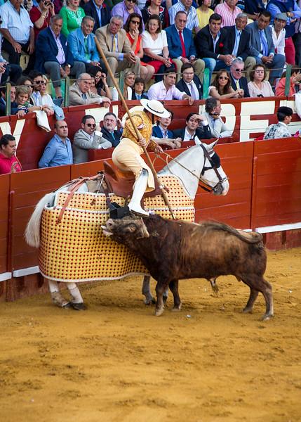 Bullfight2.jpg