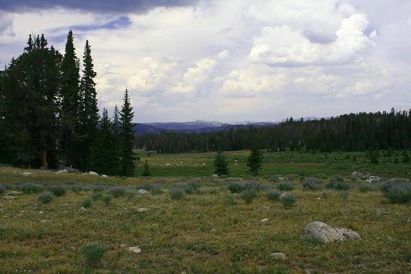 Wind River Range Wyoming. July 2006