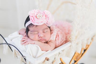 Alexandra's New born session