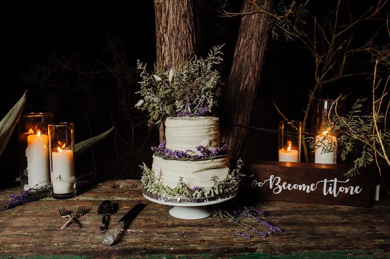 Elise&Michael_Wedding-Jenny_Rolapp_Photography-1160.jpg