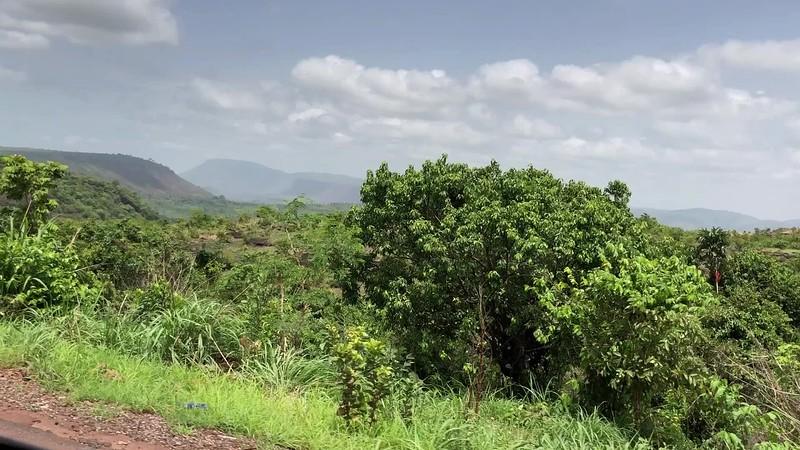 Guinea-235.mp4