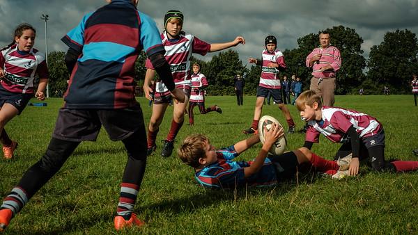 Rugby | Barnet Elizabethans RFC