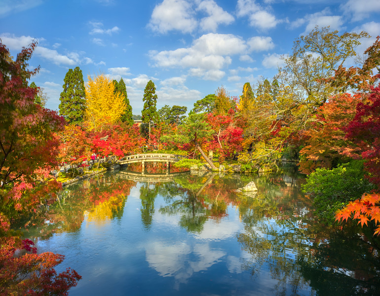 Autumn Gardens in Kyoto
