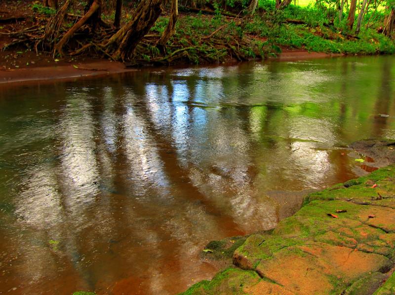 Kauai'10_S90_HDR5TC_26.jpg