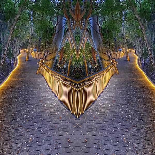 Reflections 7.jpg