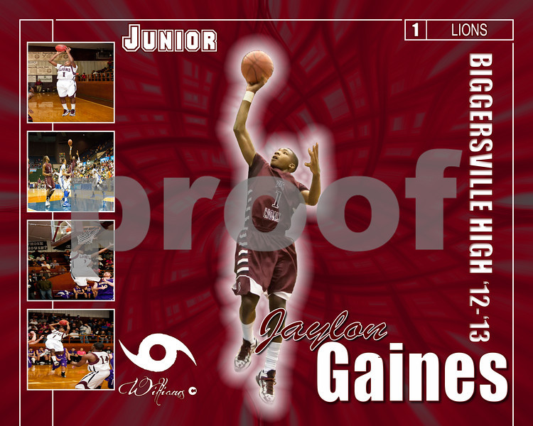 High School Basketball Posters 2012 -2013