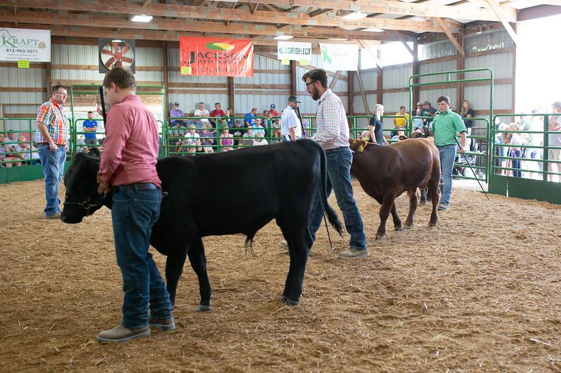 BeefShow-84.jpg