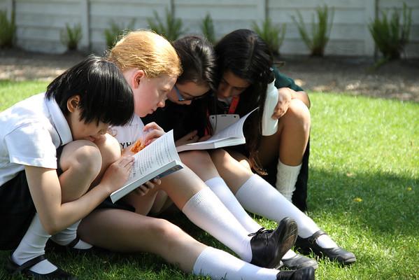 "Yorkies get ""caught"" reading during recess"
