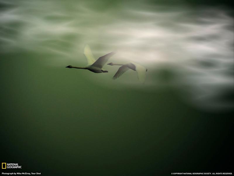 PlayWp-Nature (87).jpg