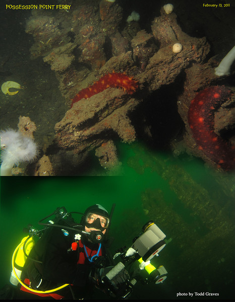 First dive of the day:  the wreck of KEHLOKEN aka Possession Point Ferry. Picture of me by Todd :) Whidbey Island. February 13, 2011