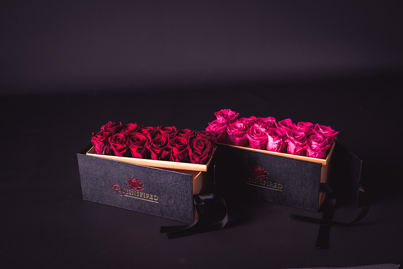 Rose Inspired (2nd Day)--24.jpg