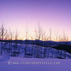 Yukon panoramic sunrise 1