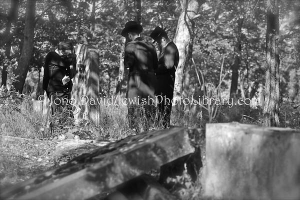POLAND, Otwock. Jewish Cemetery. (9.2011)