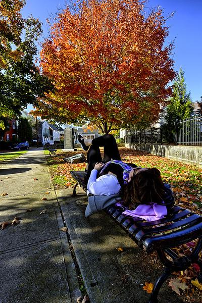 RhodeIsland Fall Tree -2.jpg
