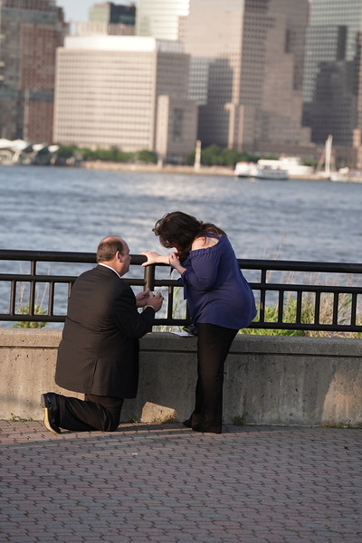 Mike & Lynn Surprise Engagement