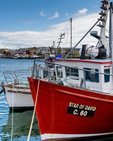Fishing boats moored at harbor, Dingle Peninsula, County Kerry, Republic of Ireland