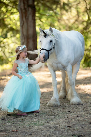 Tiffany (Dillion) unicorn