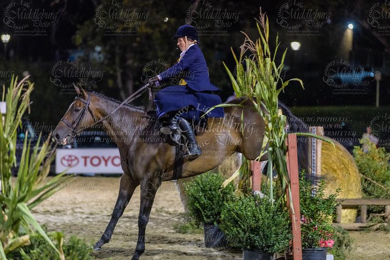 Ladies Side Saddle Under Saddle