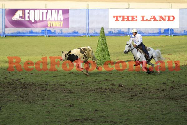2011 11 10 Equitana Campdrafting_Finalists