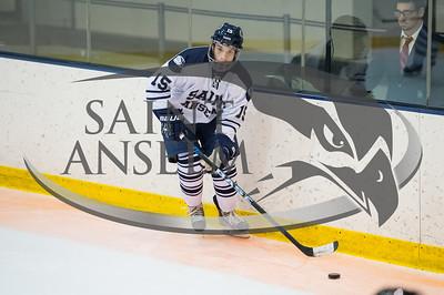 Men's Ice Hockey vs. Castleton (11/6/15) Courtesy Jim Stankiewicz