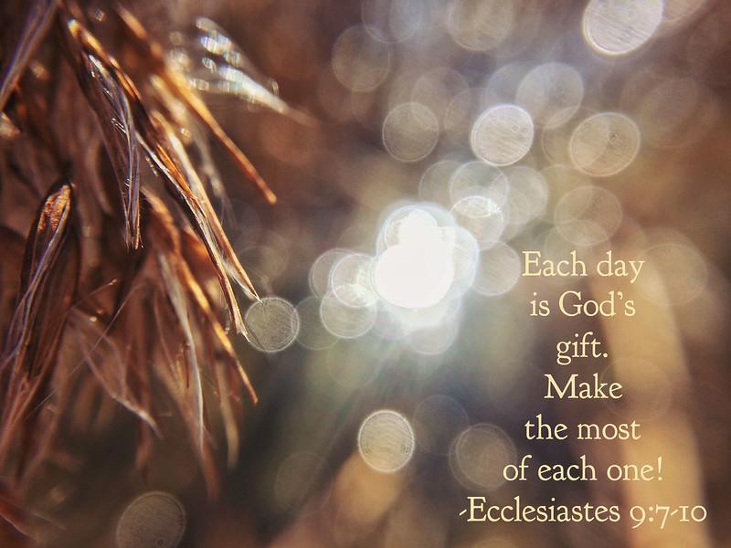 21_Ecclesiastes9-7-10_NJ_2017-3-26.jpg