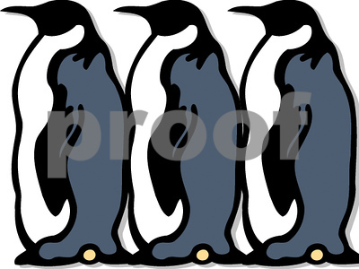 australia-was-once-home-to-giant-penguins-nearly-five-feet-tall