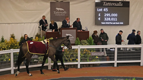 Tattersalls Cheltenham December 2018