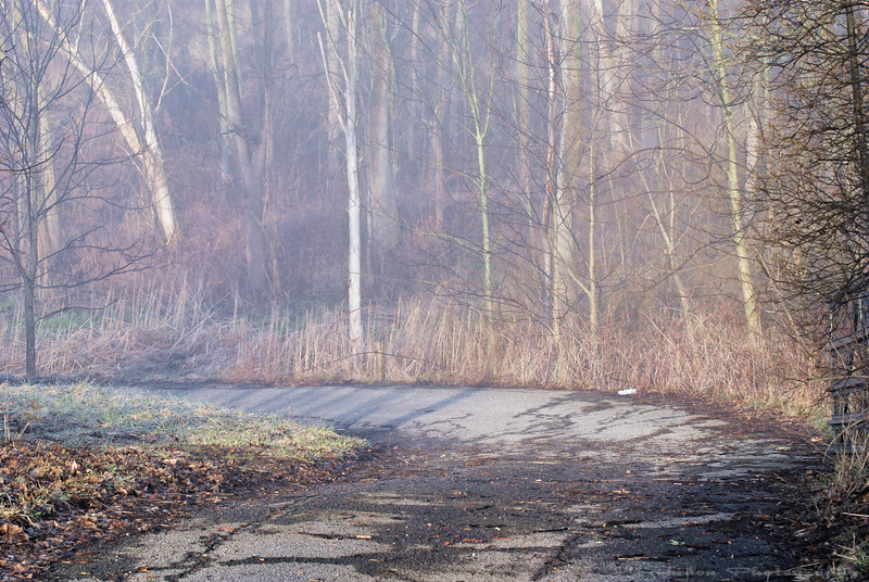 April 12th, 2008 - A mysterious road leading to the magic forest. It used to be a main road going in town 150 years ago, it is now abandoned. Have a great day. - JY
