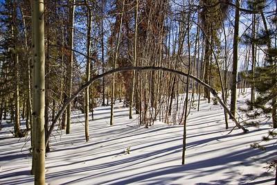Snow Mountain Ranch, Winter Park, CO Jan 2010