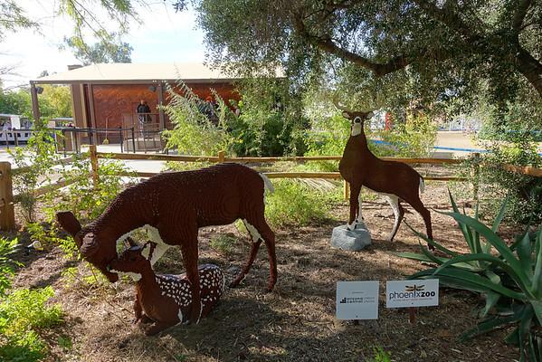 Phoenix Zoo Visit Dec2016