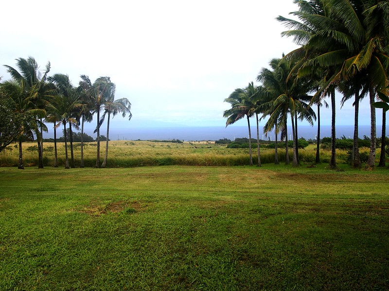 Kohala-Farm-Tours-View.jpg