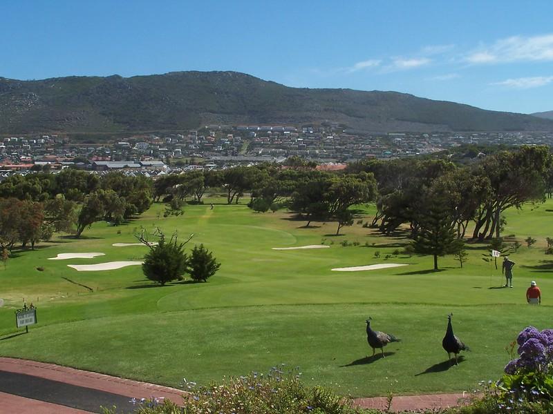 South Africa 045.jpg