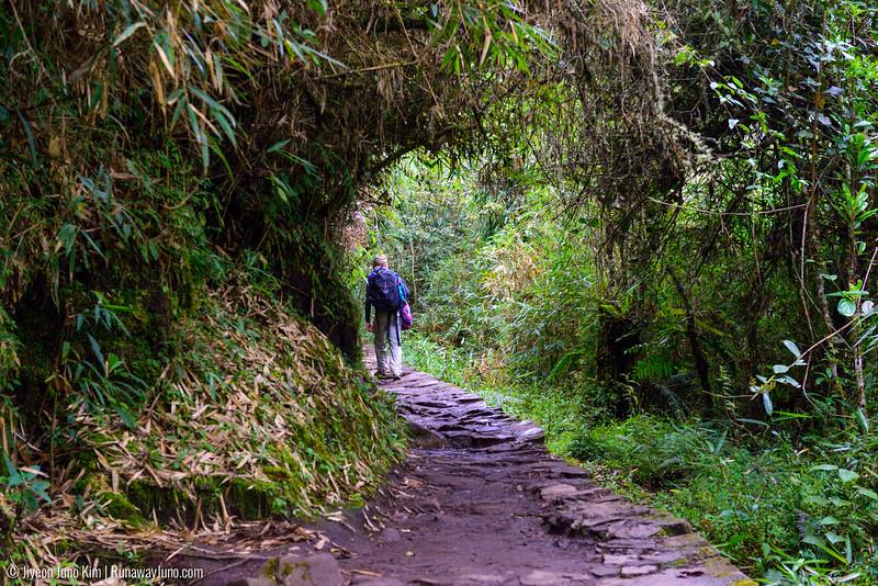 06.20_Machu Picchu-7600.jpg