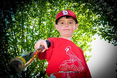 2013 6u Cardinals(ORDERED)