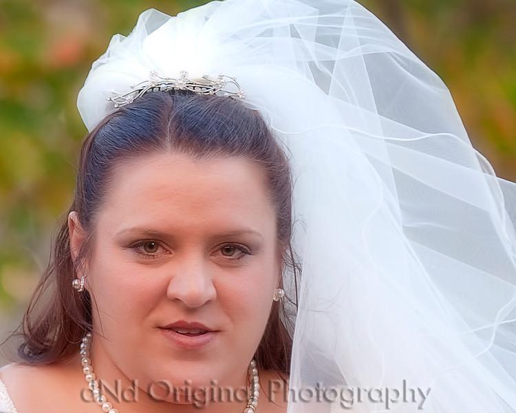 105 Tiffany & Dave Wedding Nov 11 2011 (10x8) soft.jpg