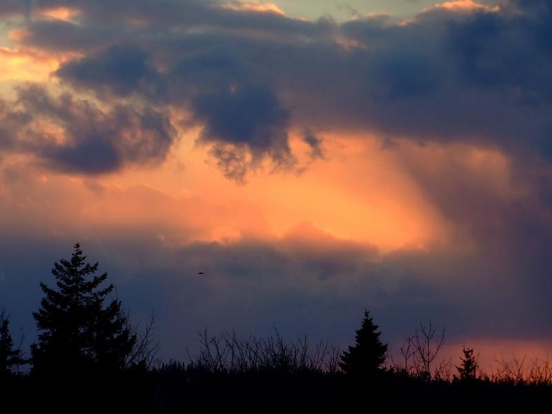 Sunset_Feb03_16.jpg