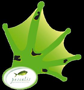 Logo-Pescalis-frog-print.png