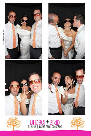 Bridget & Brad's Wedding