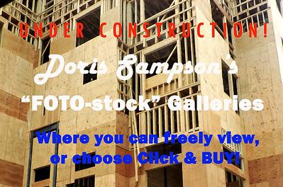 "Doris Sampson's ""FOTO-stock"" Galleries, UNDER CONSTRUCTION"