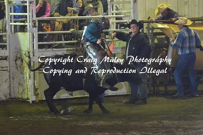 Steers Saddlbronc 4-16-2016