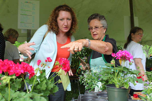 Woodstock Garden Club, Plant Sale