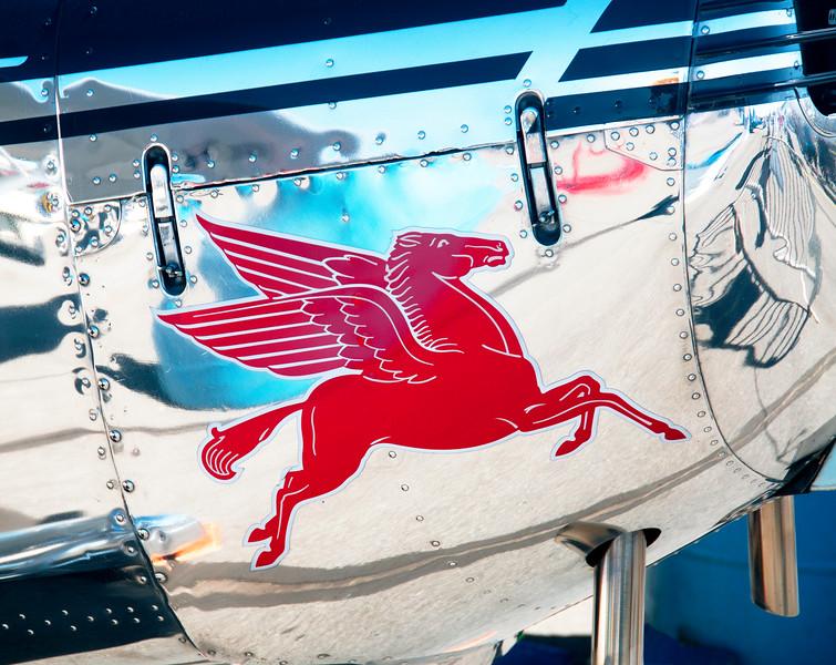 flying horse2.jpg