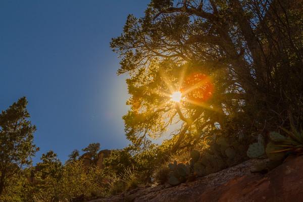 ARIZONA - Pheonix, Grand Canyon & Sedona