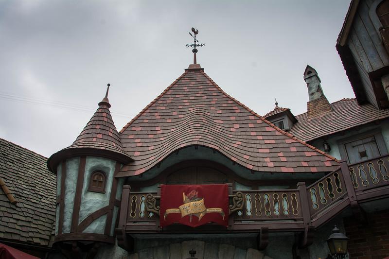 Disneyland-96.jpg