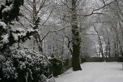 Jan - March 2009