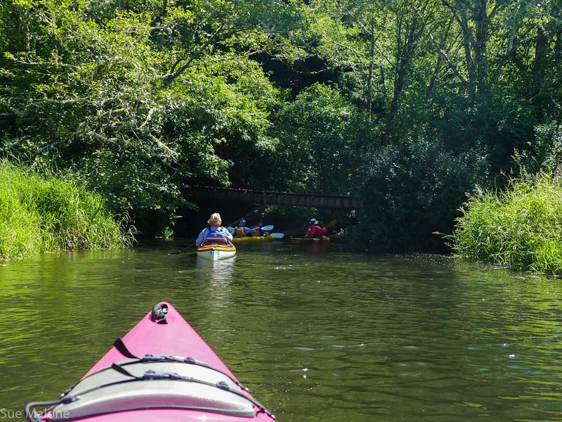 Beaver Creek Kayak (19 of 21).jpg